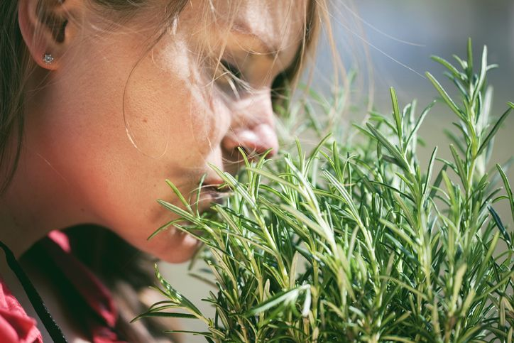 Woman sniffing rosemary